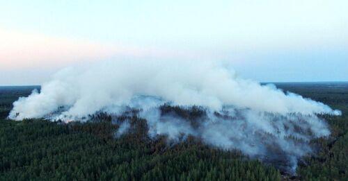 Årtiondets största skogsbrand i Kalajoki – hundrafalt större än genomsnittet
